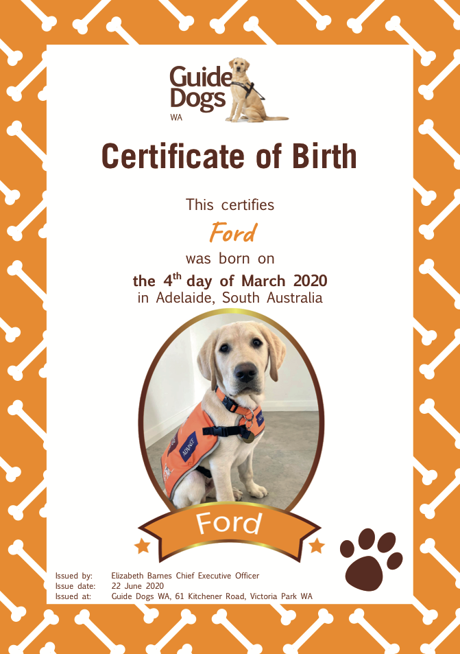 ford birth certificate